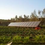 solare termico 8